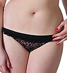 Scantilly Pounce Bikini Brief Panty
